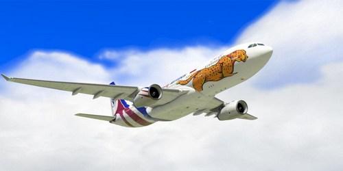بلیط هواپیما معراج
